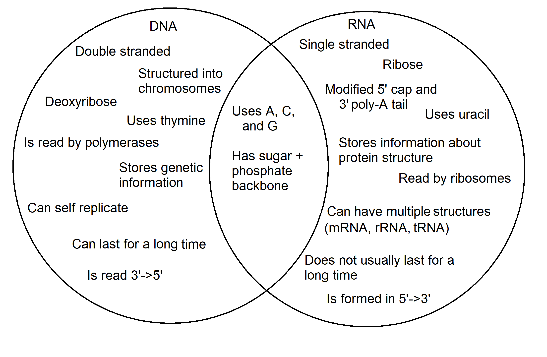 the image is a venn diagram  the dna circle contains: double stranded,  structured